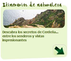 Excursiones y Rutas guiadas por Cerdeña