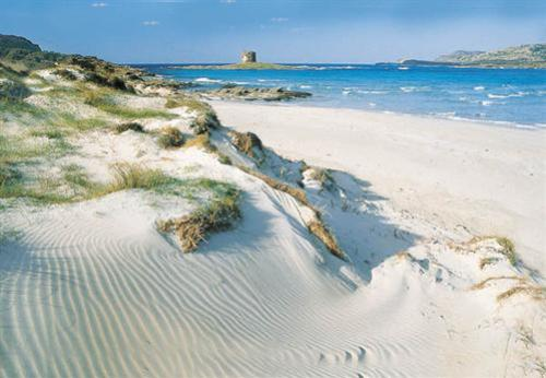 Stintino y Playa Pelosa